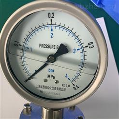法兰式膜片压力表YTNHN-100ML