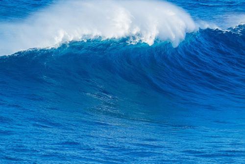 国内首款海洋环境大数据系统正式上线运行