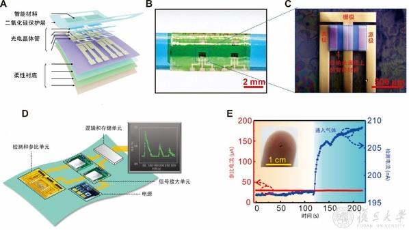 复旦大学研发出柔性薄膜组装集成芯片传感器