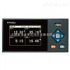 VX2400真空度记录仪