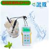 污水pH计 快速检测废水排放酸碱度